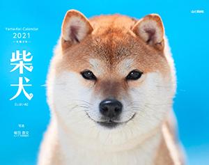 カレンダー2021「柴犬」