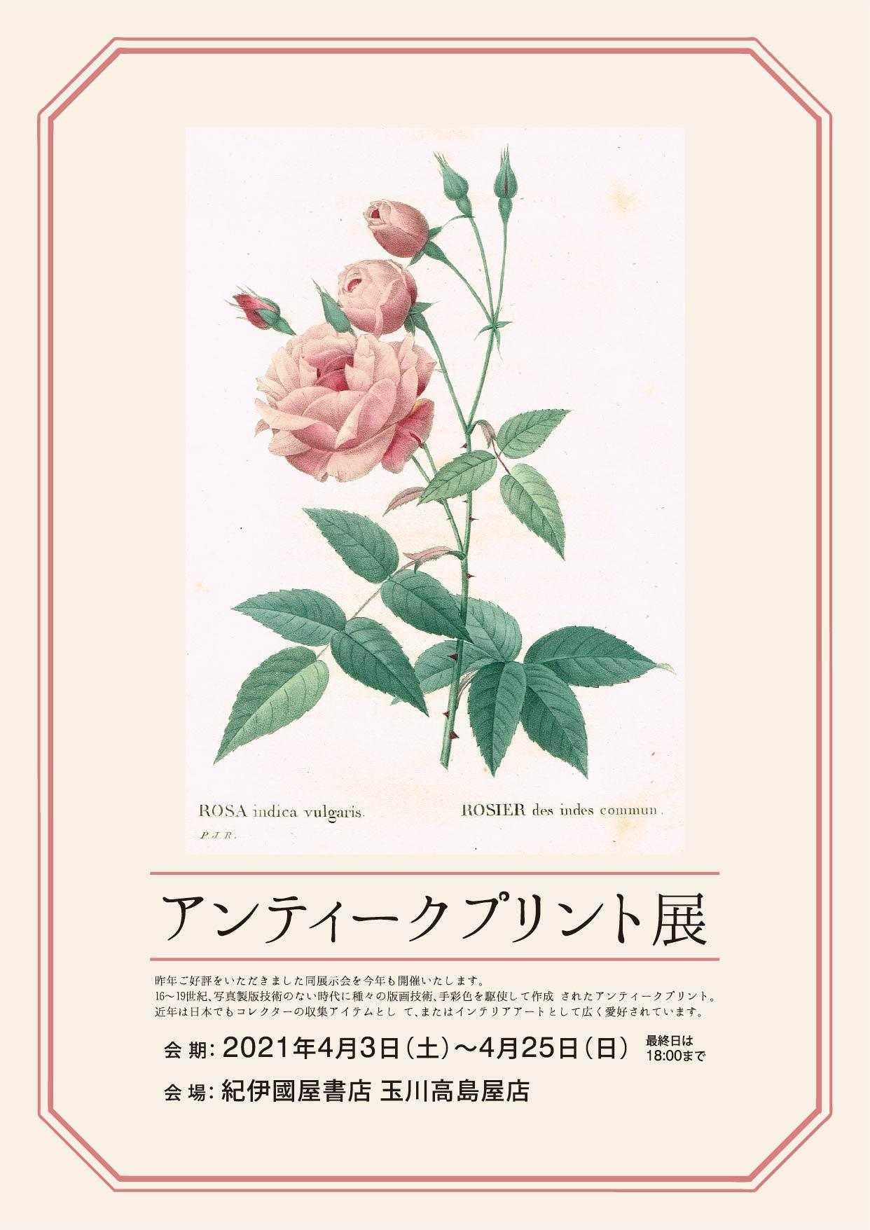 紀伊國屋書店:アンティークプリント展 2021年4月3日(土)~25日(日)