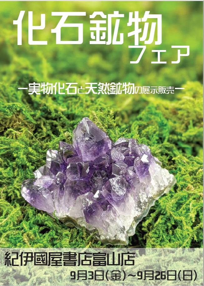 紀伊國屋書店:化石・鉱物フェア